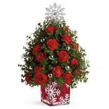 Carnations with Snowflake