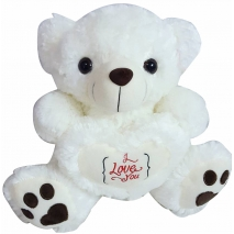 buy white teddy bear to philippines