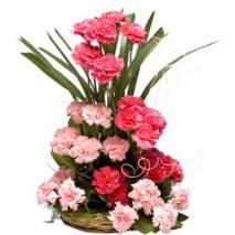 Carnation Basket Send To Philippines