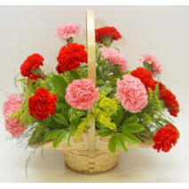 Carnations Delight Send To Philippines