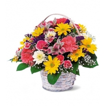 Carnations & Daisies Send To Philippines