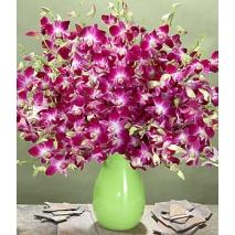 2 dozen Purple Dendrobium Orchids Send To Philippines