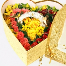 Freesia & 50 Roses Box Send To Philippines