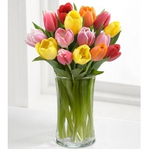 assorted tulips Send To Philippines