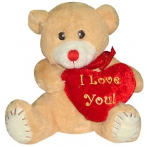 buy heart with teddy bear online philippines