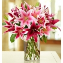 online lilies vase to philippines