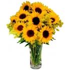 sunflowers online philippines