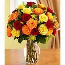 24 Multi Color Roses in Vase with Greenery