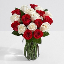 24 Candy Cane Roses