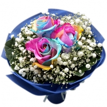 send rainbow roses in bouquet to philippines