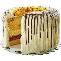 buy mango cake to philippines