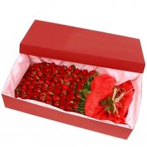 100 Stem Rose Box Send To Philippines