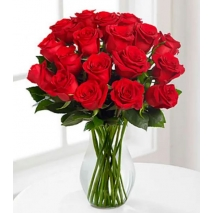 18 Red Roses Send To Philippines