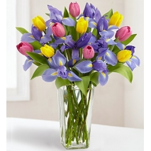 Tulip and Iris Bouquet Delivery To Philippines