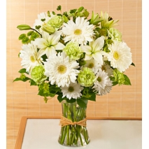 Serene Green Flowers Delivery To Philippines