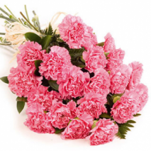 12 pink carnations Send To Philippines
