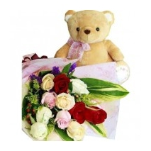 12 Mixed Roses & Teddy Bear Delivery To Philippines