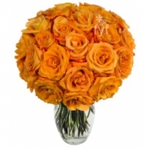 24 Orange Roses Send To Philippines