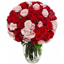 100 Blooms of Pink and Red Roses Send To Philippines