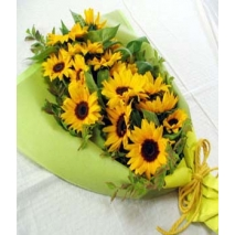 One Dozen Sunflowers Delivery To Philippines