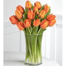 15 Orange Tulips Send To Philippines