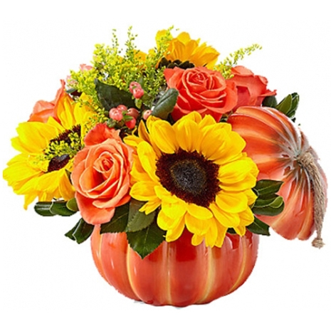 buy pumpkin flowers philippines