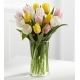 online tulips vase in philippines